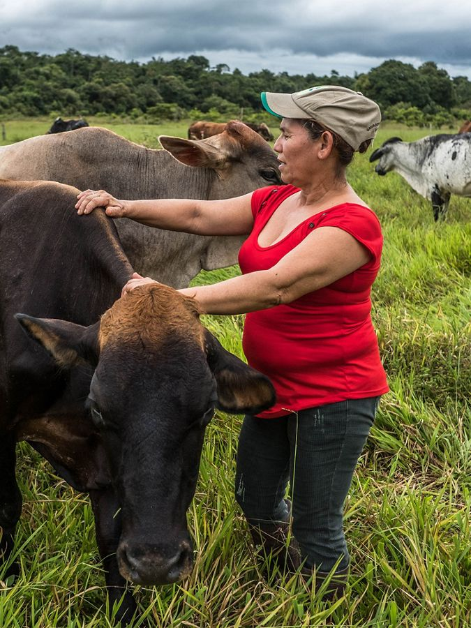 a woman in a red shirt has her hands placed on her cows