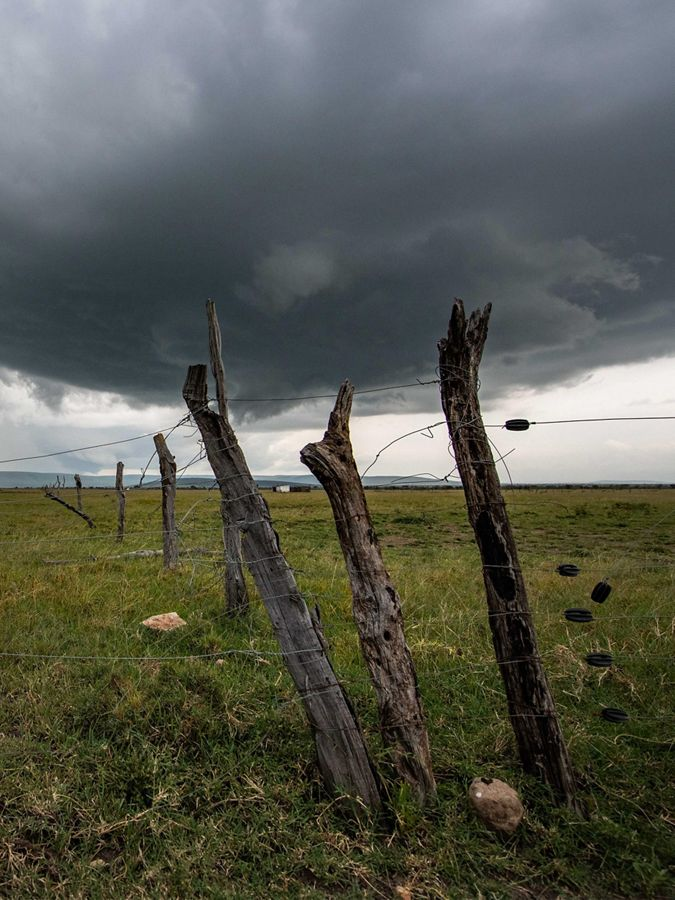 three posts wrapped in wire fencing against stormy sky