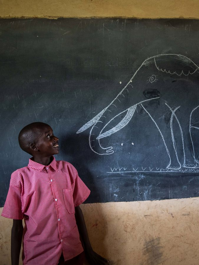 a young child looks at chalk drawing of elephant