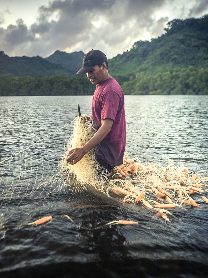 a man stands in water with fishing net