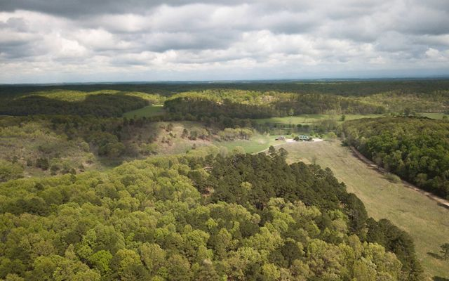 Birds-eye view of the J.T. Nickel Preserve and surround Ozark forest.
