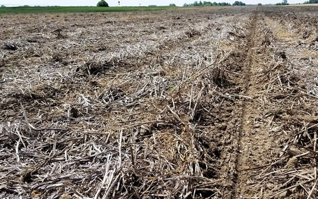 A brown farm field of dried up crops lays dormant before new planting.