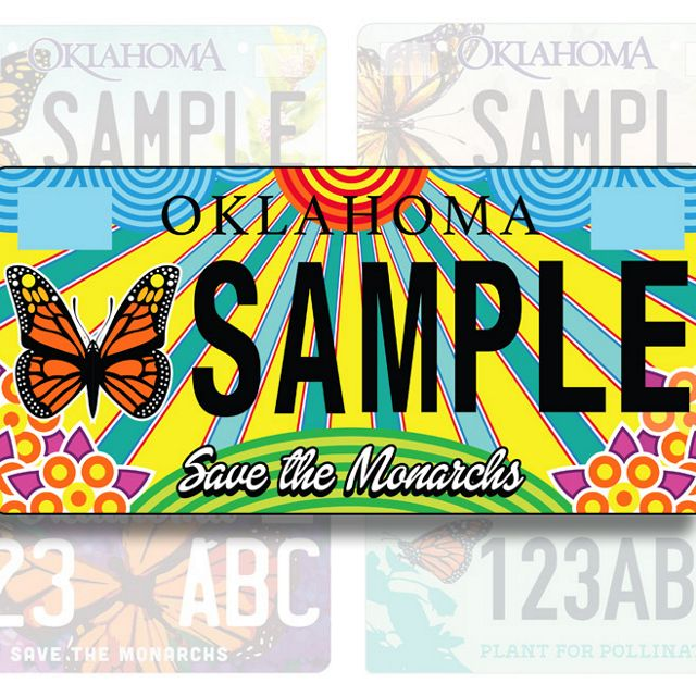 Oklahoma Monarch License benefiting The Nature Conservancy.