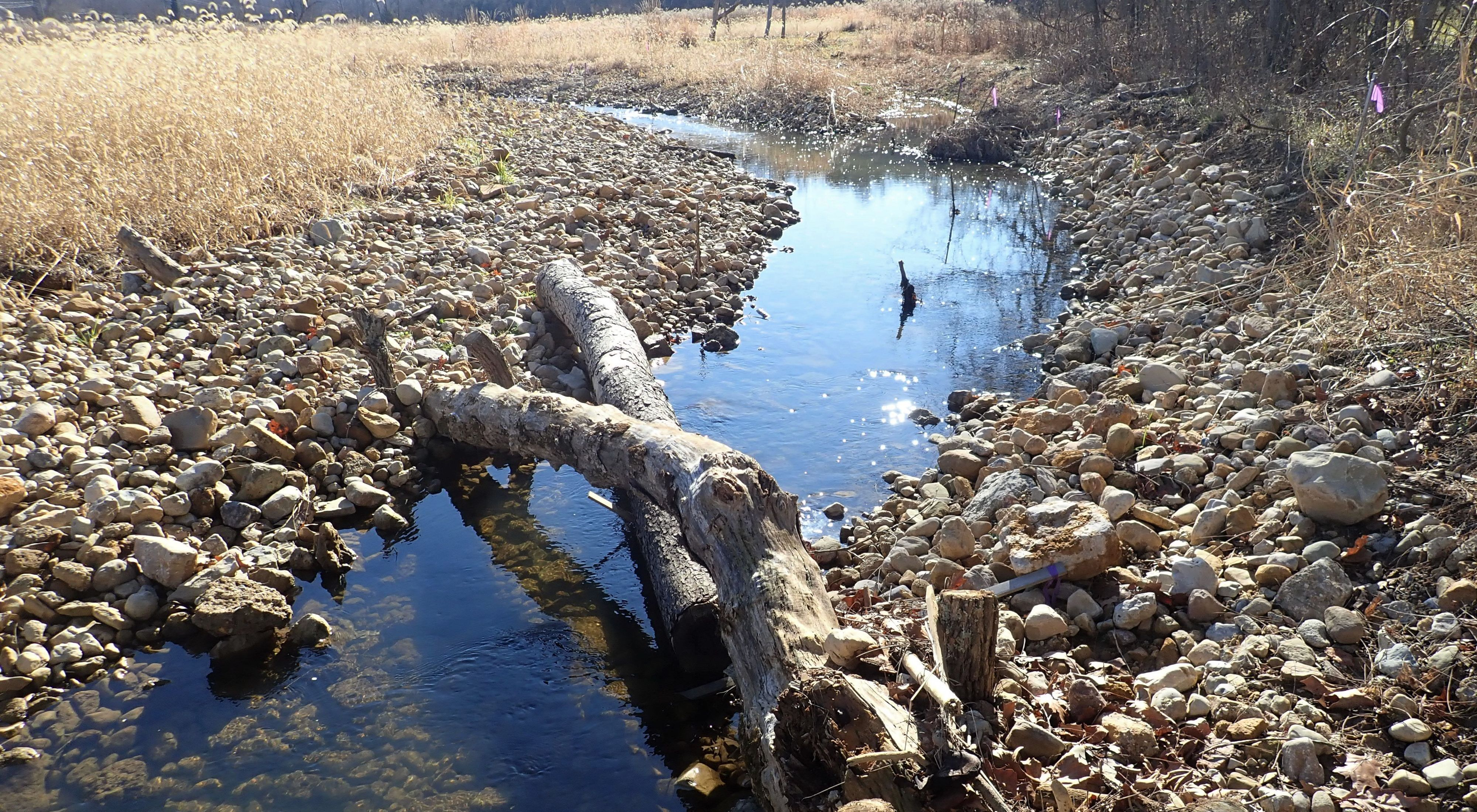 An instream woody habitat feature was installed at the stream restoration site.