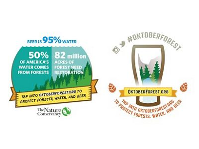 Protecting forests, water and beer