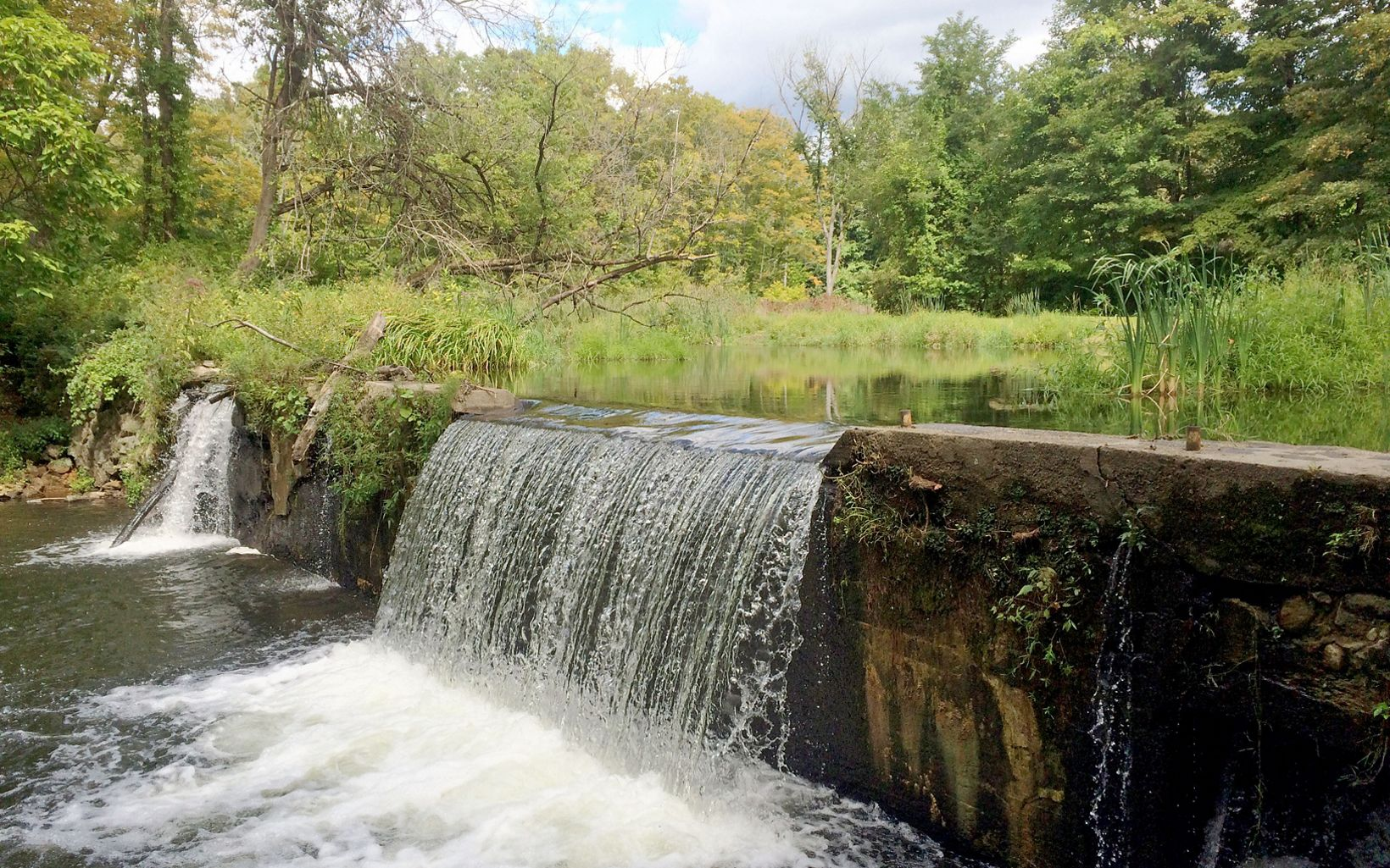 Obsolete dams, like the Old Papermill Dam in Connecticut, can often cause harm to the environment.