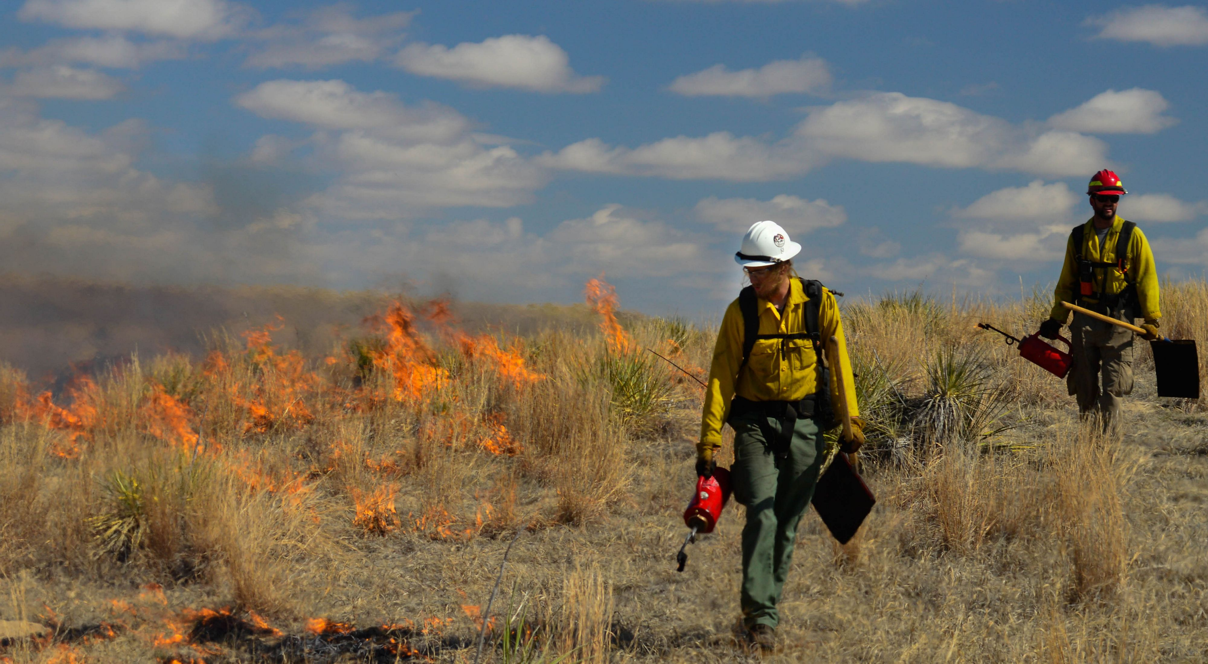 Using a drip torch for a controlled burn
