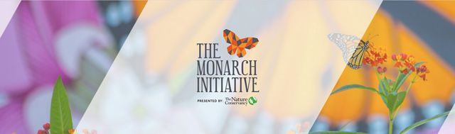 The Monarch Initiative branding banner: a photo of a monarch on a flower is overlain by the Monarch Initiative logo.