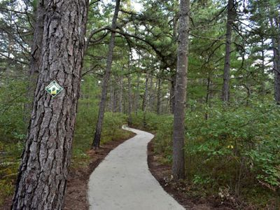 A wide path through the woods.