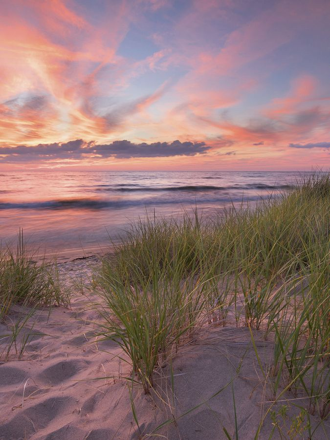 Pink and purple sunset on beach dotted w/ short grass.