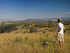 in New Mexico, part of the Malpai borderland area, from the high elevation of the Coronado National Forest.
