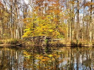 View across a river with fall-colored trees on a shoreline being reflected in the water.