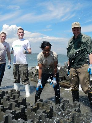 Volunteers work on an oyster restoration project at Virginia Coast Reserve