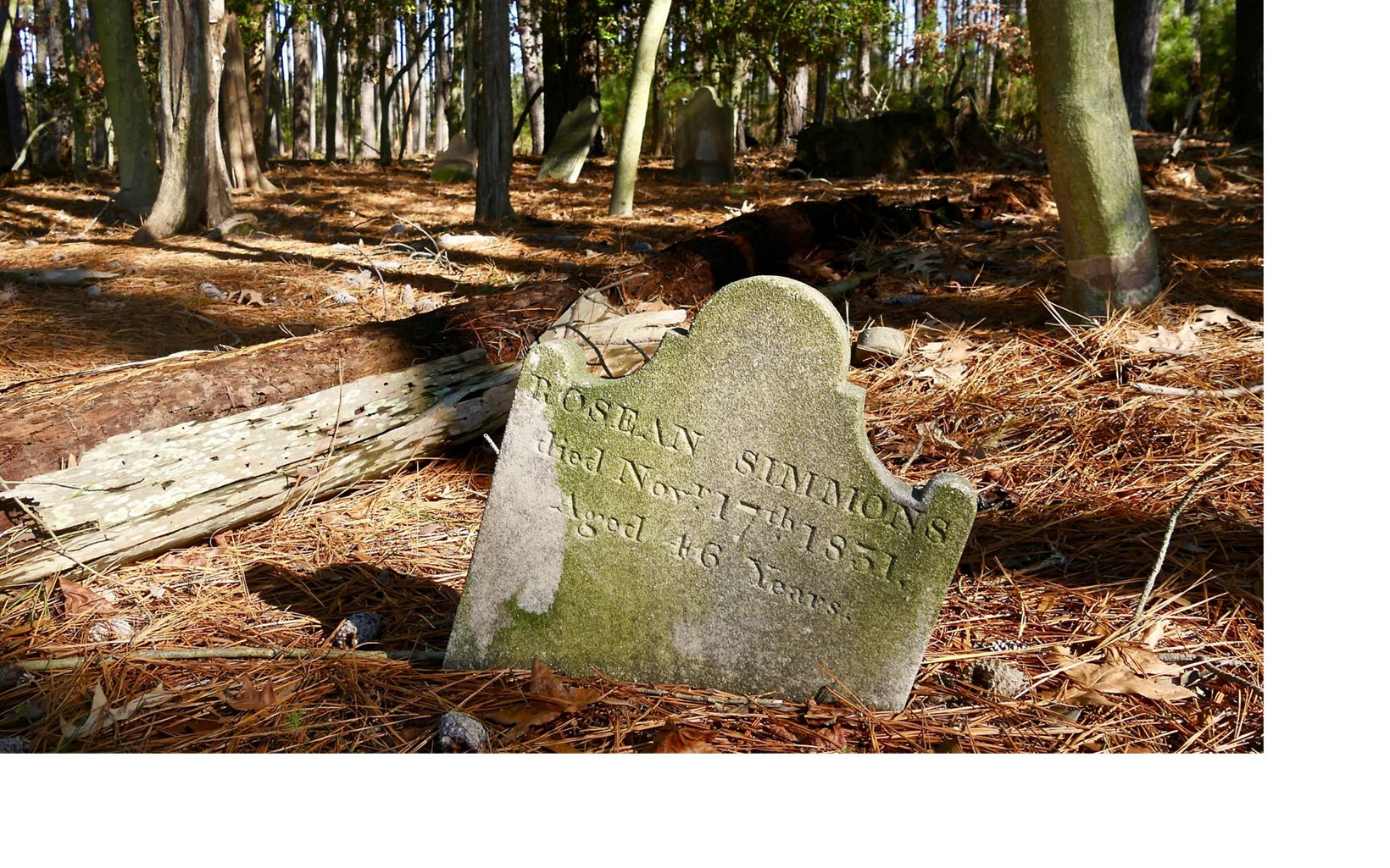 Rosean Simmons died Nov. 17, 1831. Though the cemetery may be lost to ravages of time and rising waters, knowledge of the place and those buried there will be preserved.