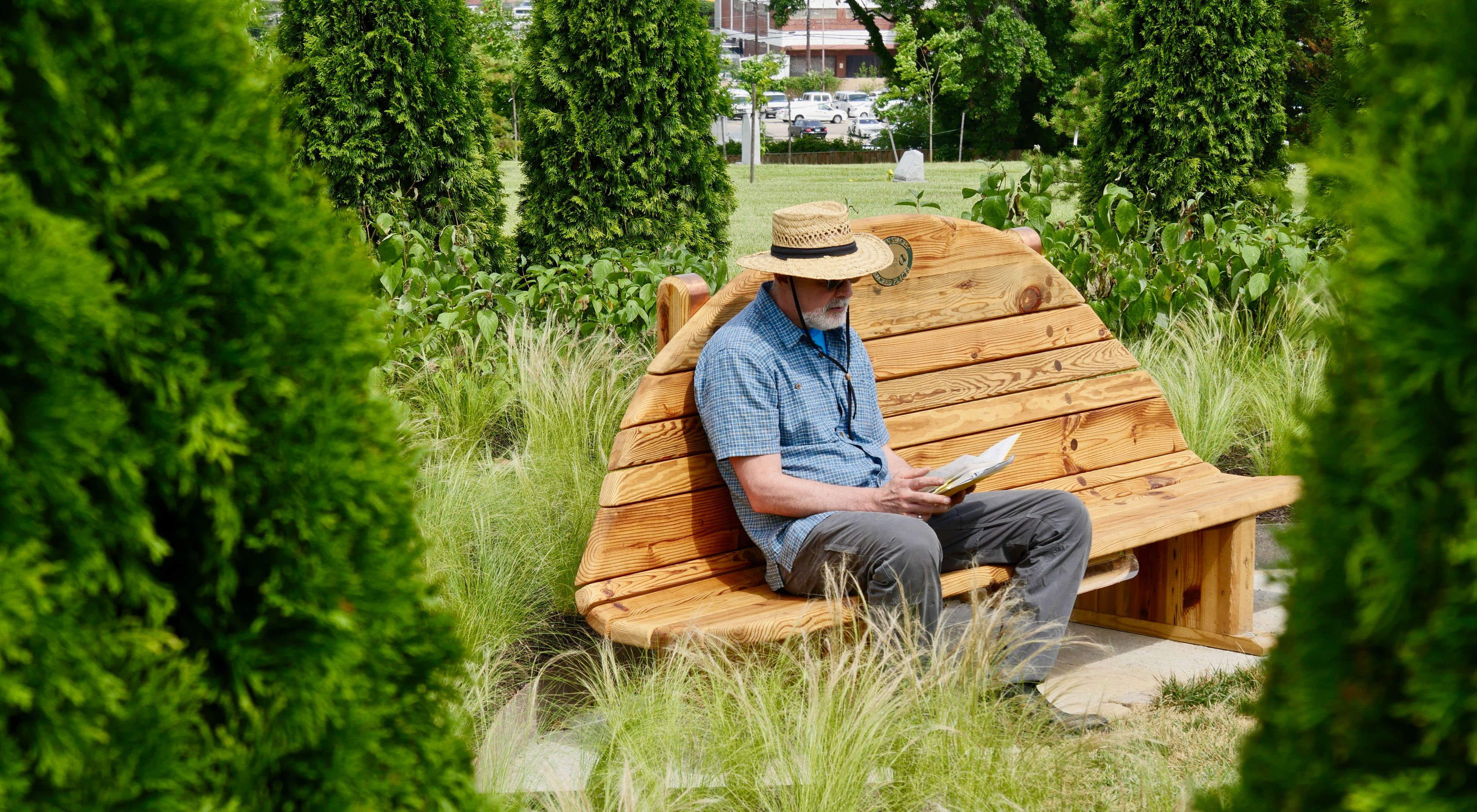 A man sits on a bench reading a book in an urban green space of newly plants trees and shrubs.