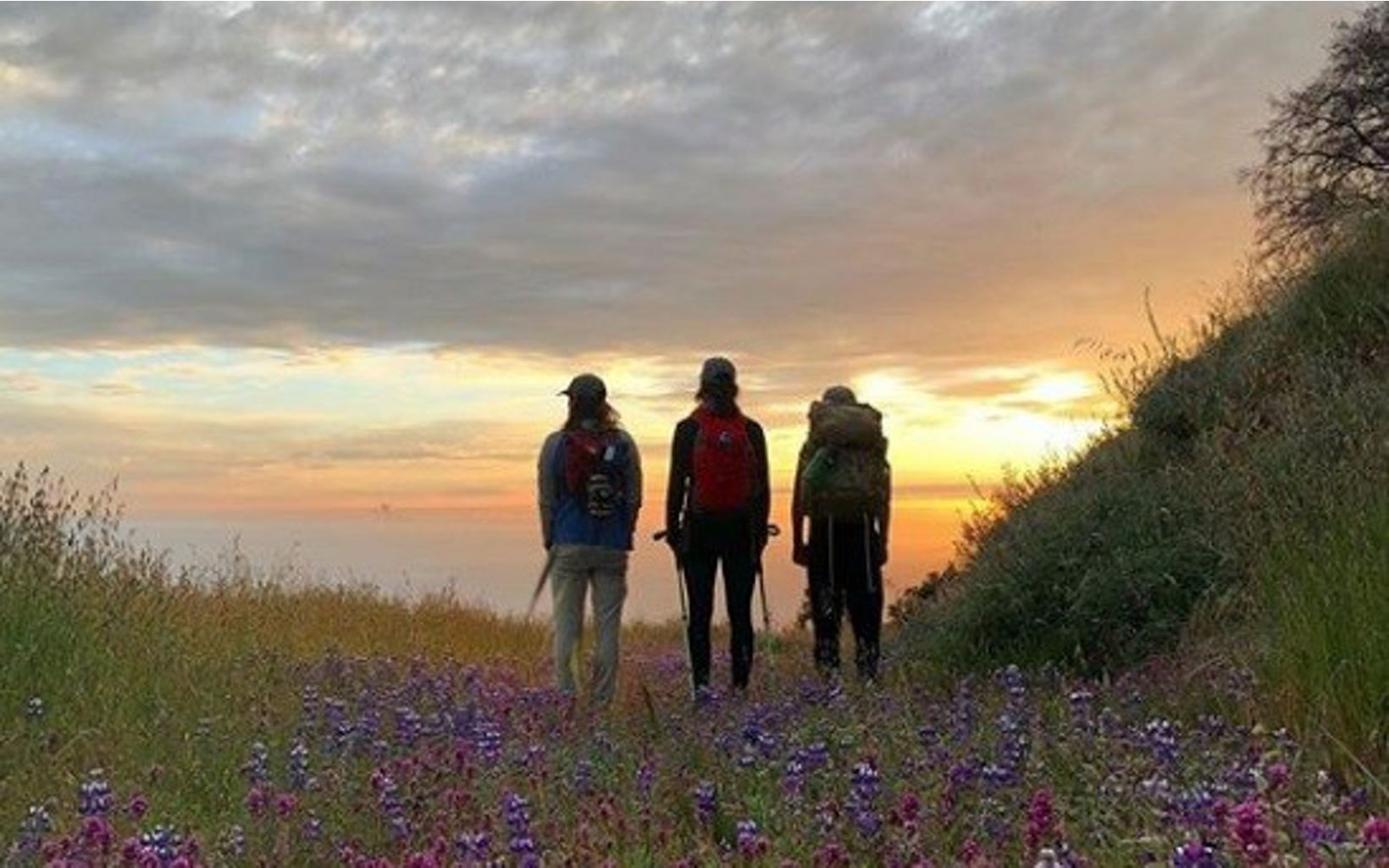 My friends and I love watching the sunset. You can catch amazing views on the Bluffs Trail at Andrew Molera State Park.