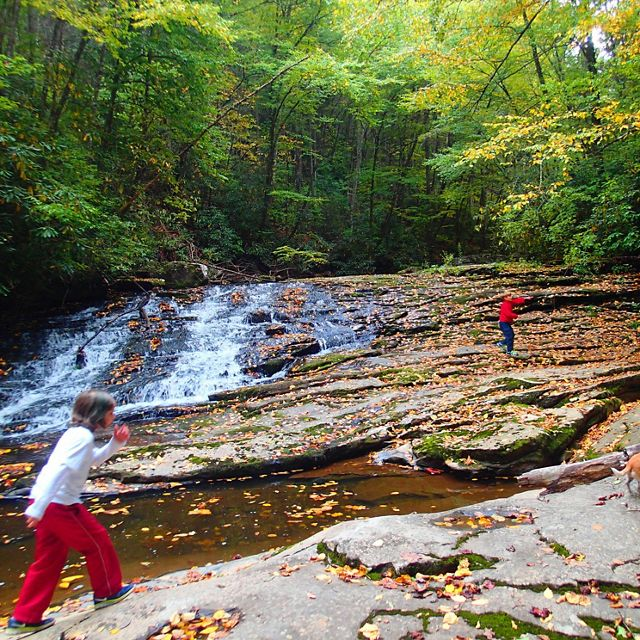 Children play in the water of Little Stony Creek.