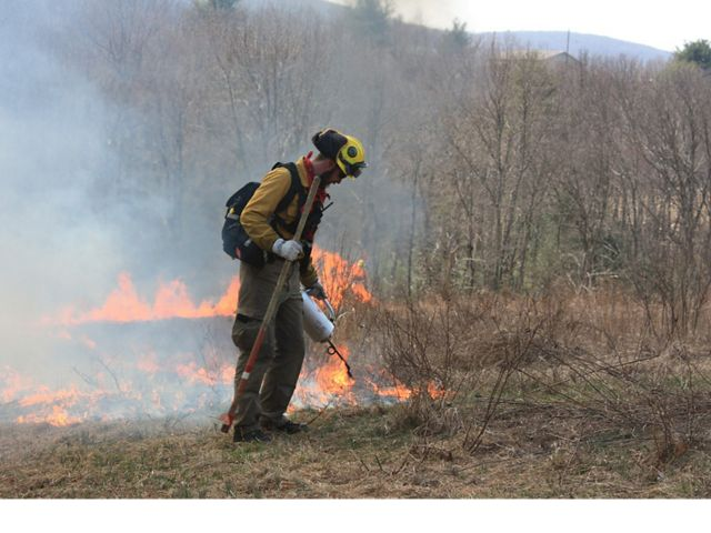 A fire crew member burns the ground.