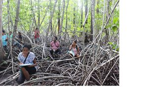 A group of women sit amongst mangrove roots.