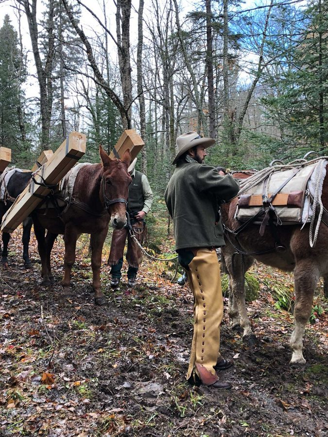 A man stands ready with a team a pack mules