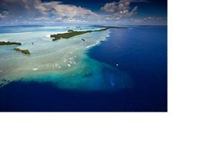 帛琉的「藍色珊瑚礁」和洛克群島珊瑚礁景色。