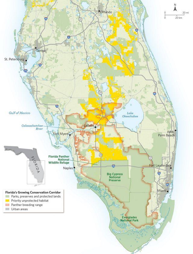 Mapa de Florida con hábitat protegida y no protegida