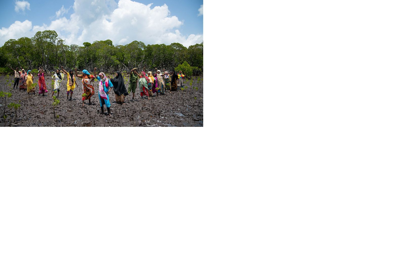 Zulfar Hassan (center, in blue), chairlady of the Mtangawanda Women's Association, and a group of women plant mangroves in a TNC-led mangrove restoration project.