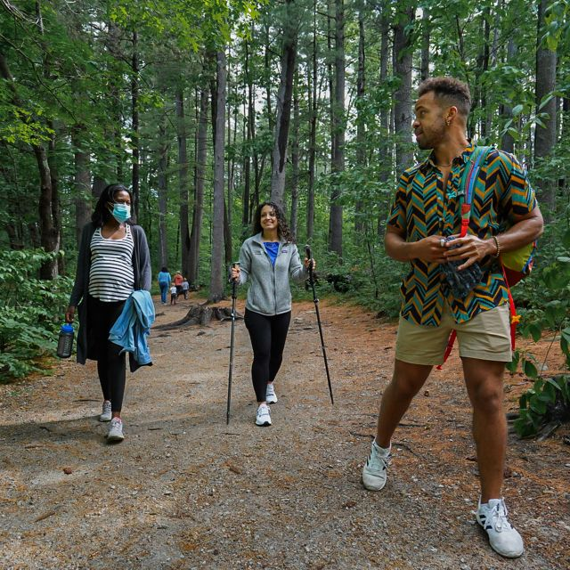 Three hikers walking down a trail in the woods. One is using trekking poles.