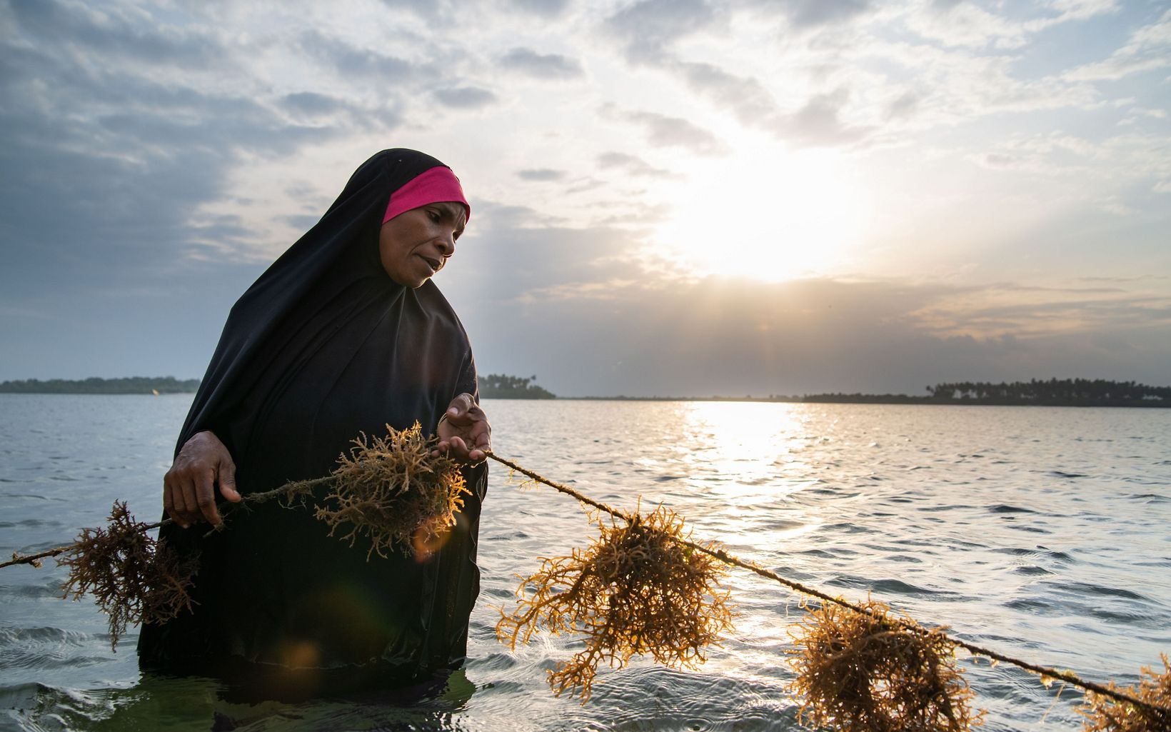 a woman holding seaweed in the ocean