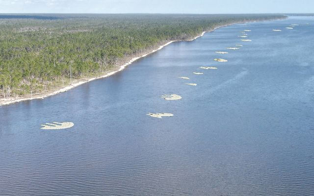 Rendering of completed oyster reefs