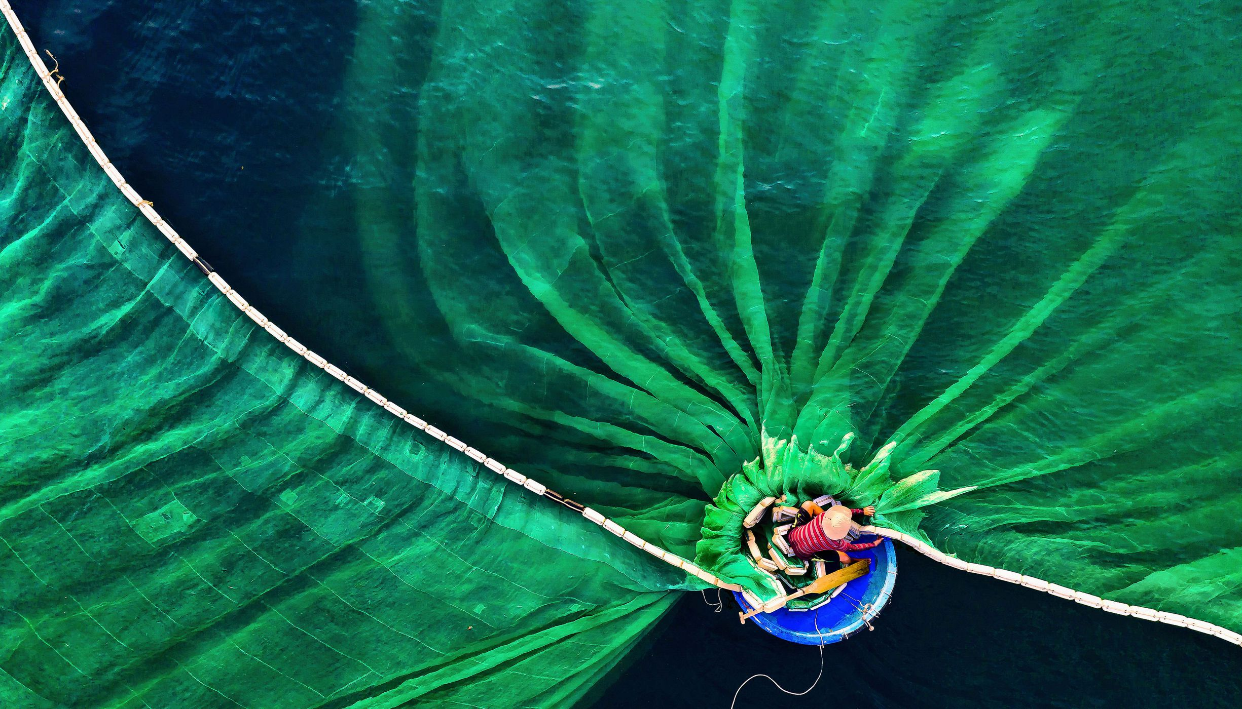Overhead view of a man on a boat casting a wide, green net.
