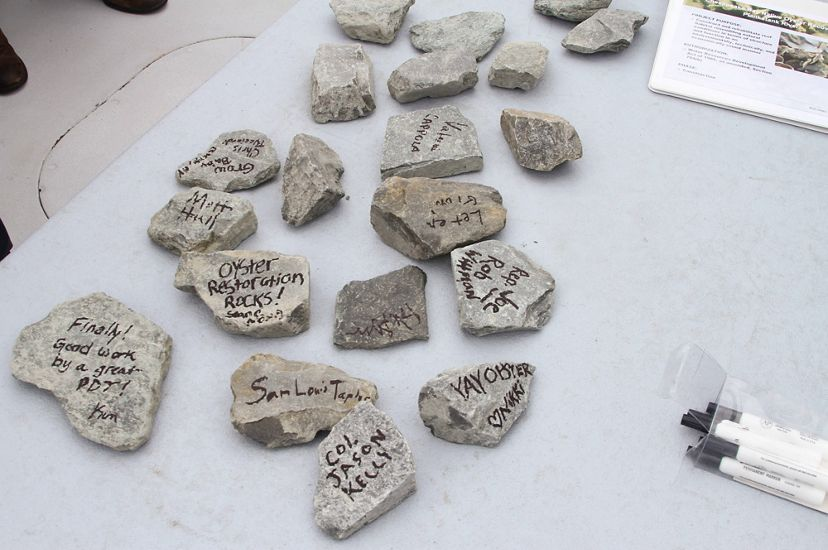 """Small rocks are spread out on a table. The rocks have messages written on them include, """"Oyster Restoration Rocks!""""."""