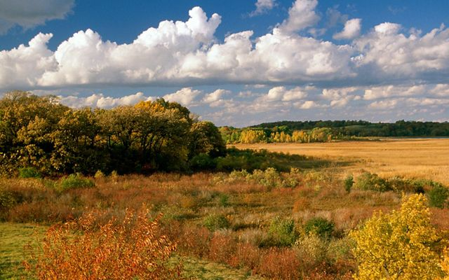 Fall colors the wetlands, forests and rolling hills at Pickerel Lake Fen in red, yellow and orange with blue sky and puffy white clouds overhead.