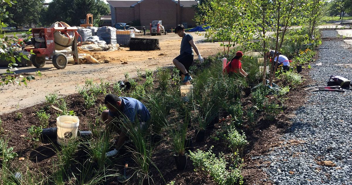Photograph of people planting a rain garden in church p
