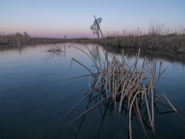 along the Platte River.