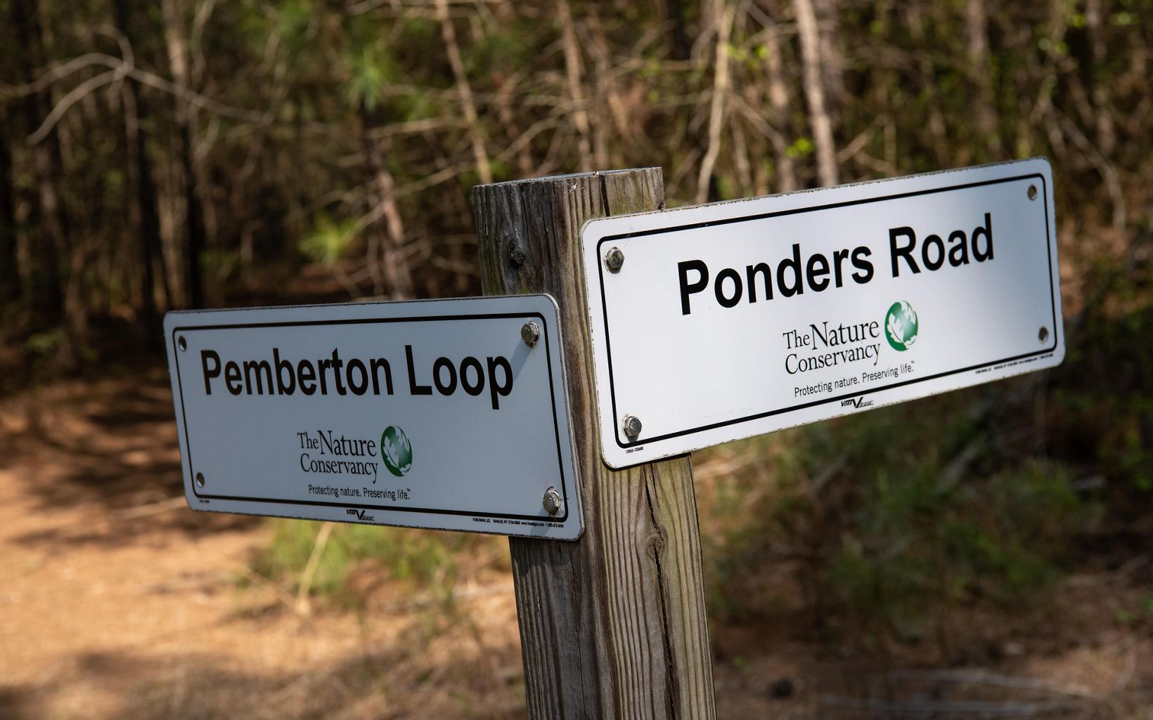 Ponders Tract Trail