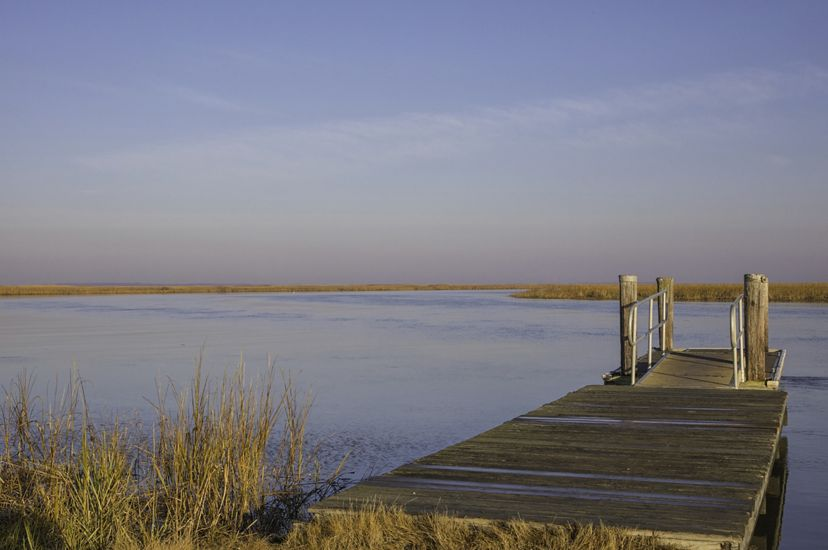 A short wooden dock extends from a marsh into a wide smooth river channel. The river curves away into the distance through tall marsh grass.