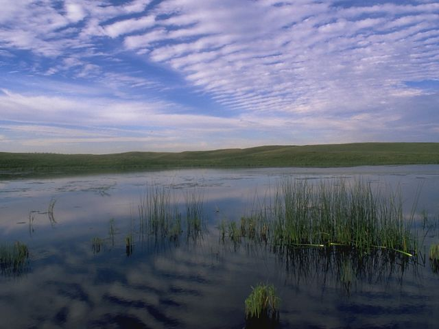 Davis Ranch Preserve near Wing, North Dakota in United States, North America.
