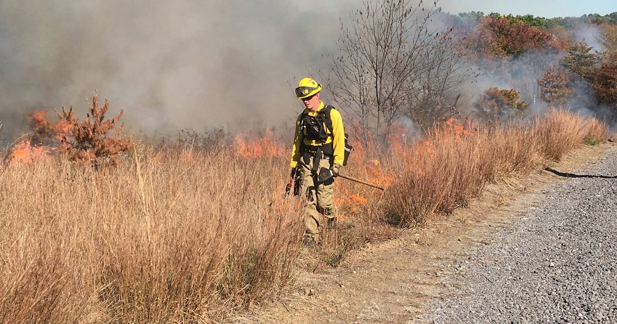 A staff member dressed in yellow applies fire to the landscape.