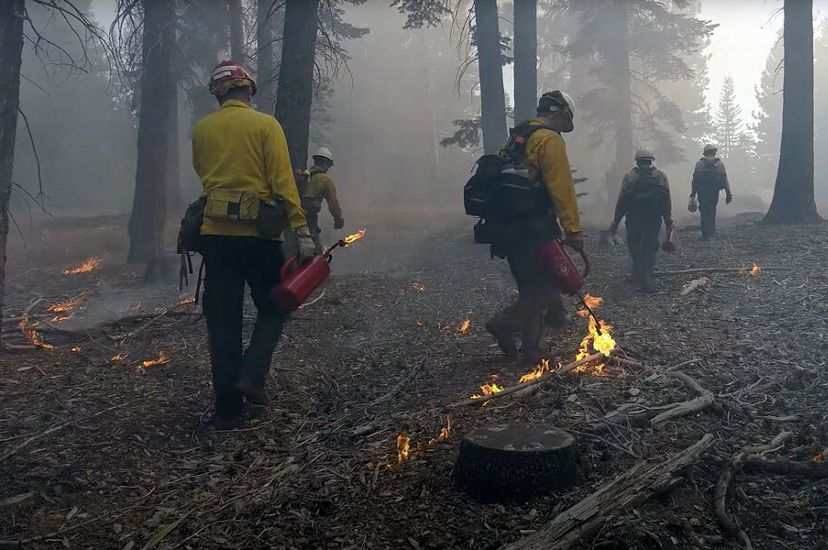 We know that ecological forest restoration, like the removal of small and unhealthy trees and controlled burning, can reduce the risk of severe wildfire.