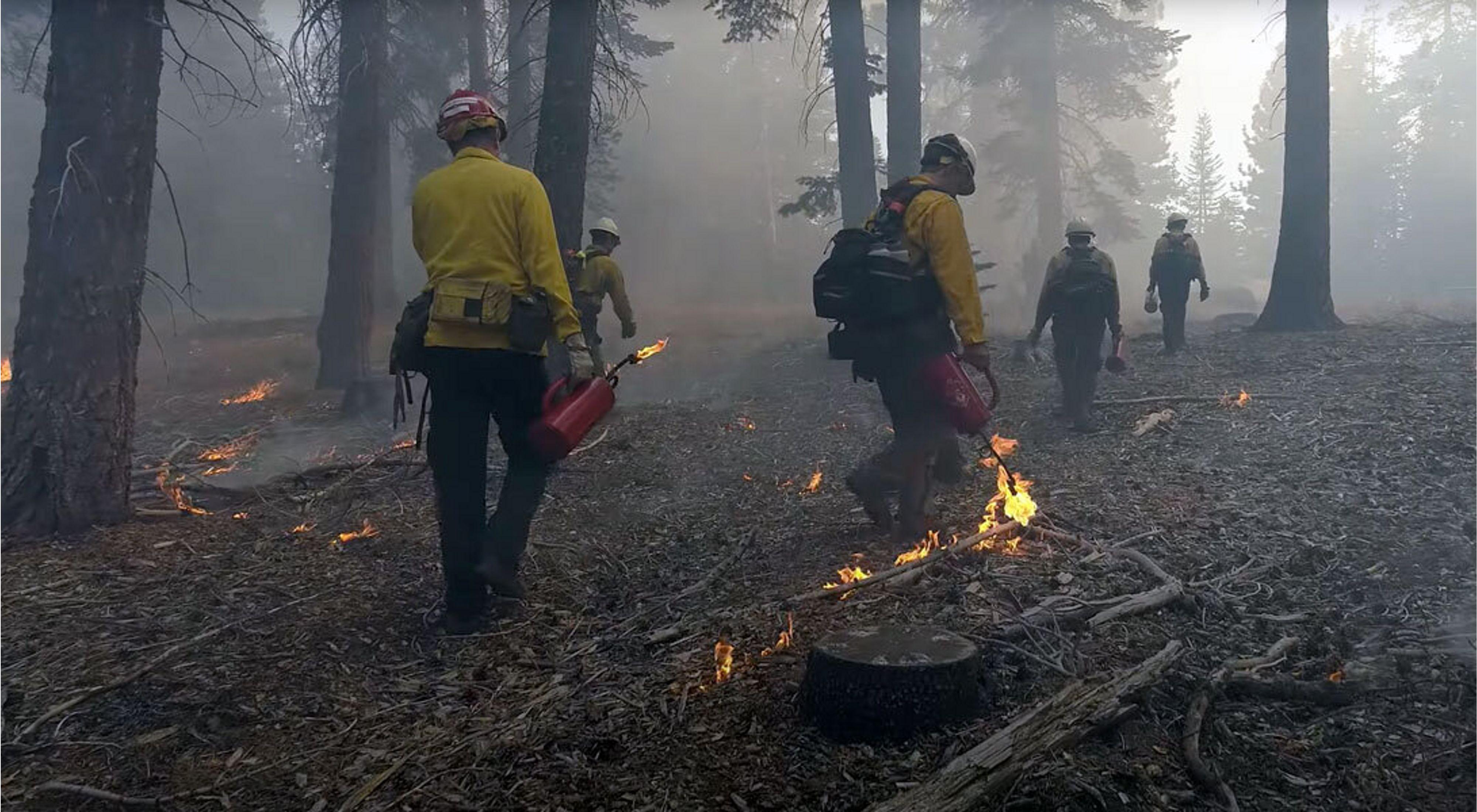Prescribed burn in California.