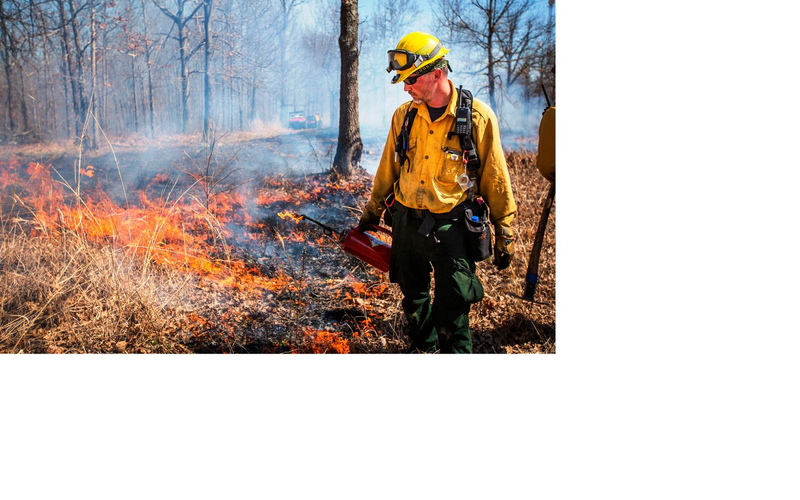 A fire worker sets a prescribed fire with a drip torch.