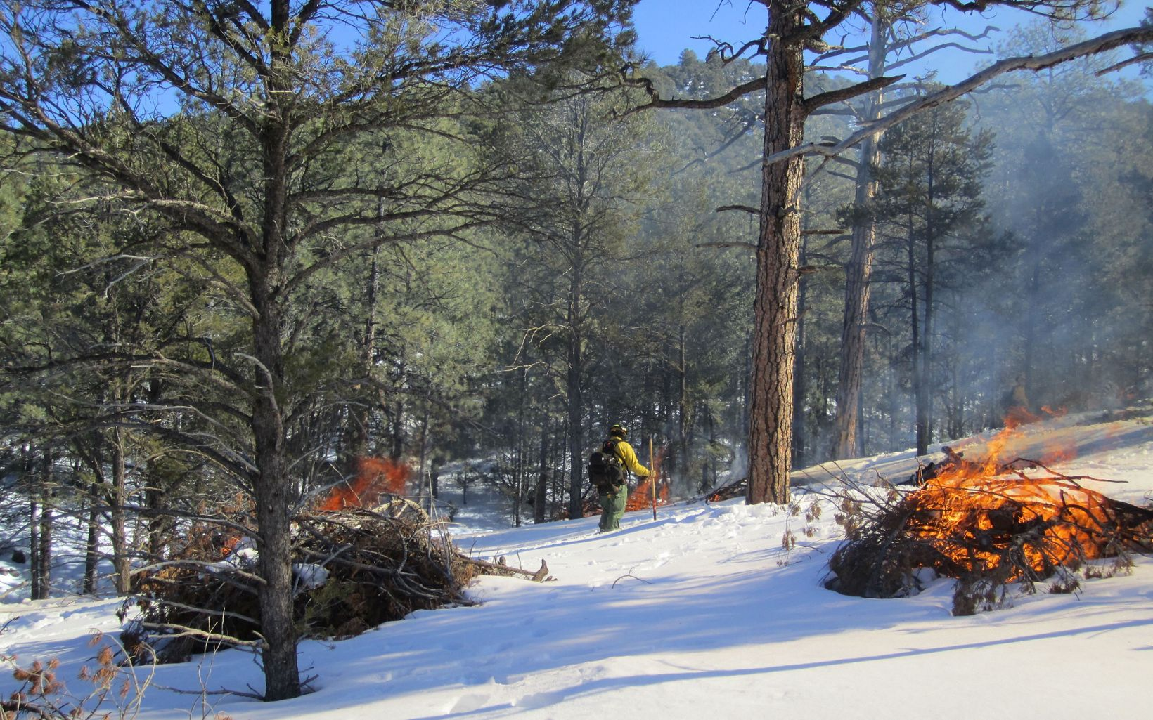 A man in yellow and green safety clothing monitors a small fire in the forest. The ground has a solid coating of white snow.