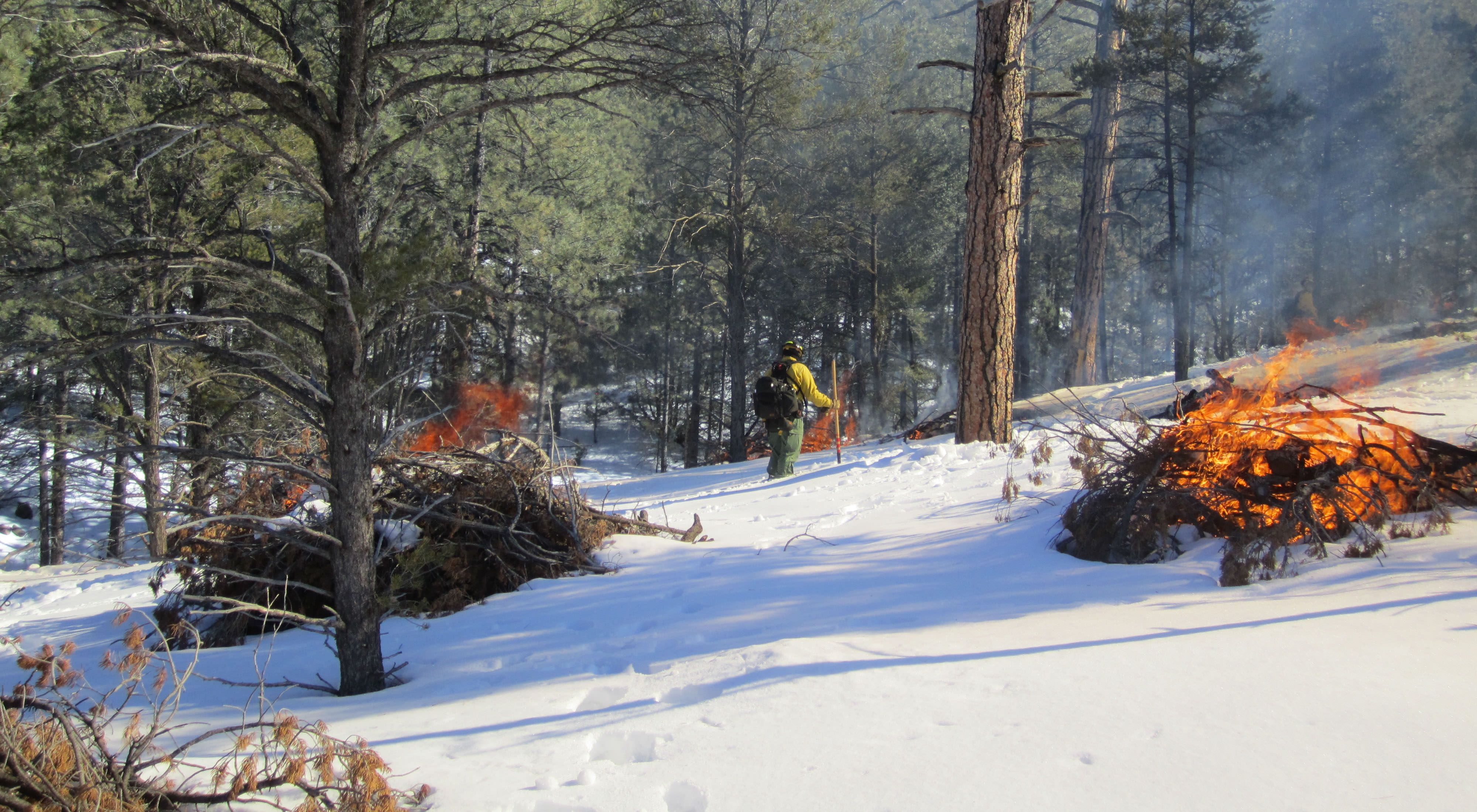 Workers on a prescribed burn on a snowy forested hill.