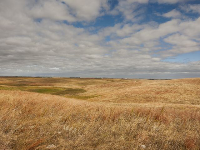 The Nature Conservancy's Crystal Springs Dailey Ranch in the Prairie Coteau region near Clear Lake, South Dakota.