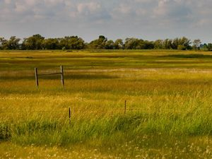 The Nature Conservancy's Spring Prairie Preserve