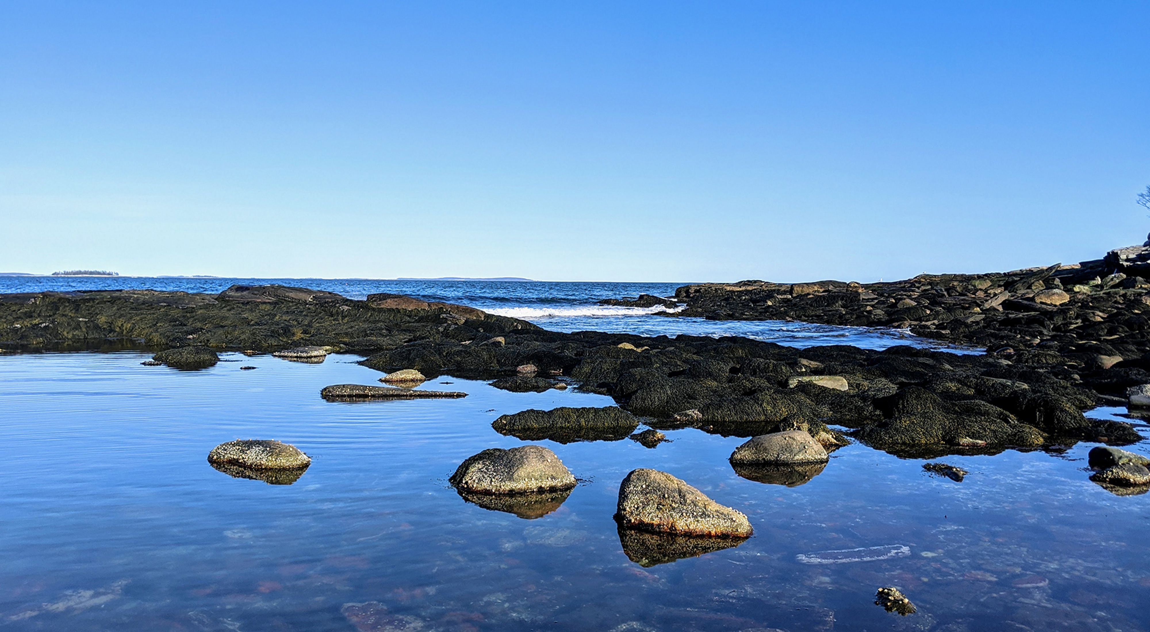 Rocky tidepools along the shore at Rachel Carson Salt Pond Preserve in Maine.