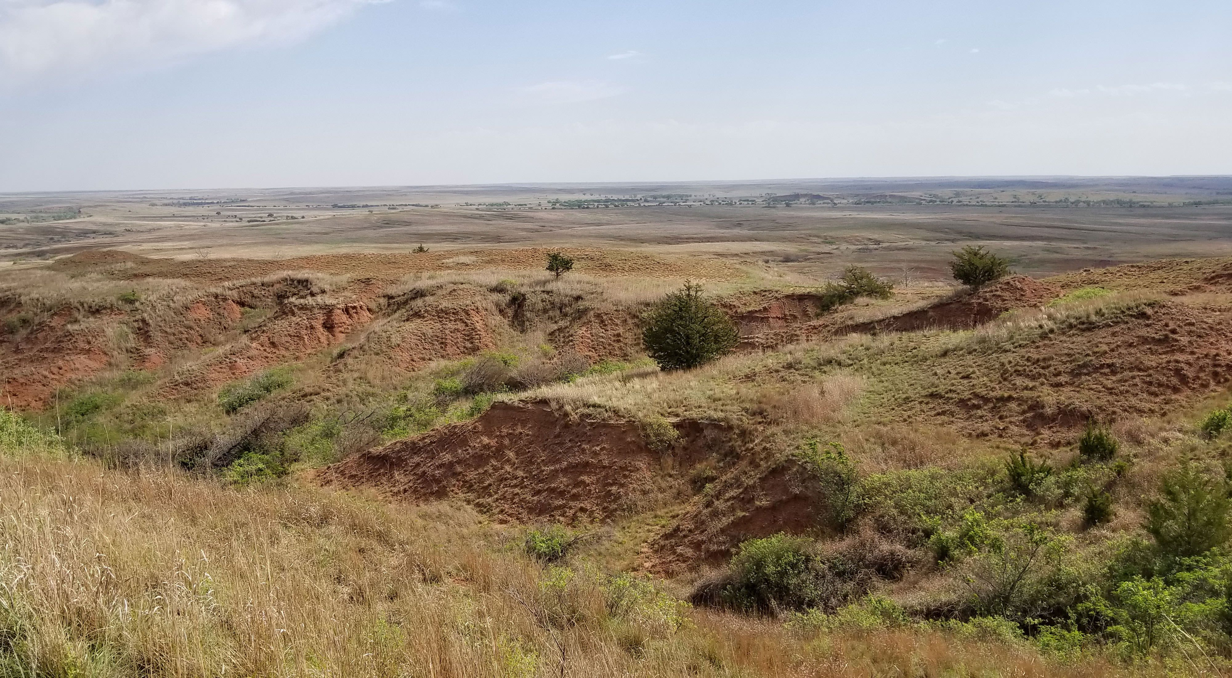 The oxidated iron in the soil gives the Red Hills their name. Also known as the Gypsum or Gyp Hills, the mixed-grass native prairie of the region extends into Oklahoma.
