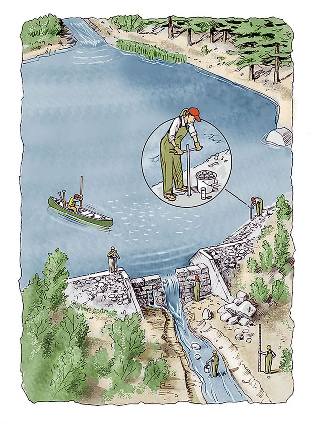 A color pencil illustration shows a dam being surveyed to plan its removal.