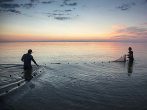 Matthew Kovach (left), The Nature Conservancy's Lake Erie Coasts and Islands Program Manager, and Alexis Sakas, TNC's Coastal Conservation Project Coordinator, set fish traps in Lake Erie off the coast of Cedar Point National Wildlife Refuge, near Toledo, Ohio. Evening of July 31, 2017. They are setting traps to assess fish population diversity and health in wetland restoration projects like Cedar Point NWR. TNC's Great Lakes program.